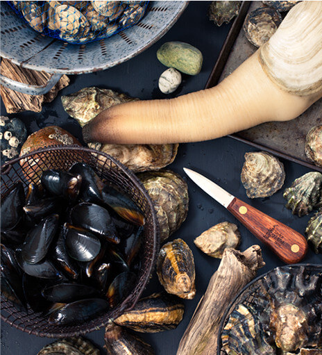 Our fresh shellfish experience delivered to your door.